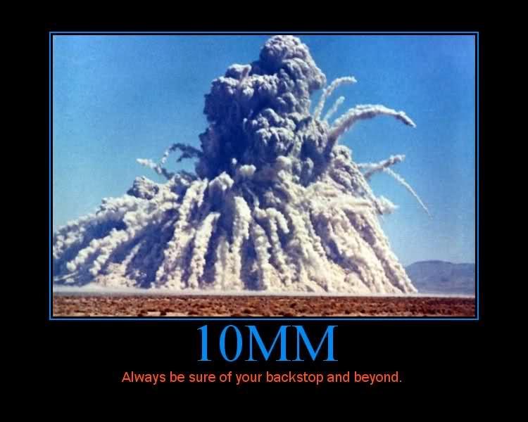 Name:  10mm Backstop.jpg Views: 132 Size:  82.2 KB