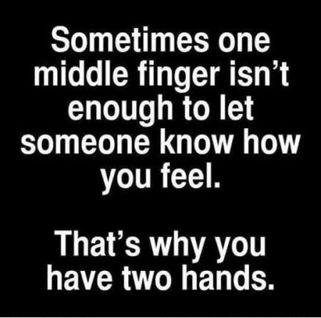 Name:  11-sometimes-one-middle-finger-is-not-enough-sarcastic-quote.jpg Views: 31 Size:  46.2 KB