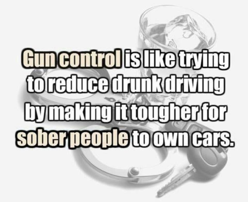 Good Essay About Gun Control