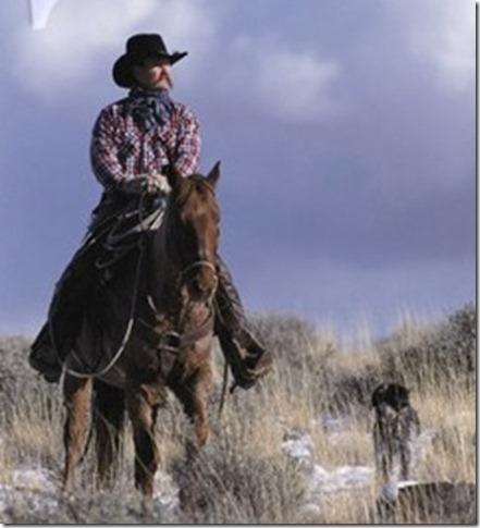Name:  Cowboy.jpg Views: 5866 Size:  44.9 KB
