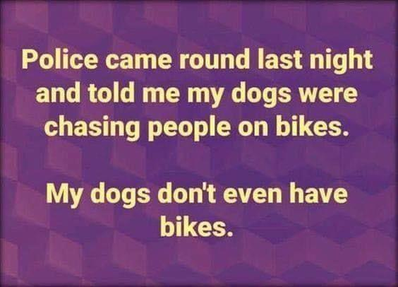 Name:  dogs chasing people on biles.jpg Views: 41 Size:  27.1 KB