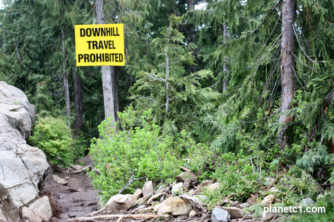 Name:  downhill-travel-prohibited-grouse-grind.jpg