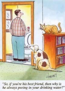 Name:  funny-cartoon-joke3-215x300.jpg Views: 34 Size:  24.0 KB