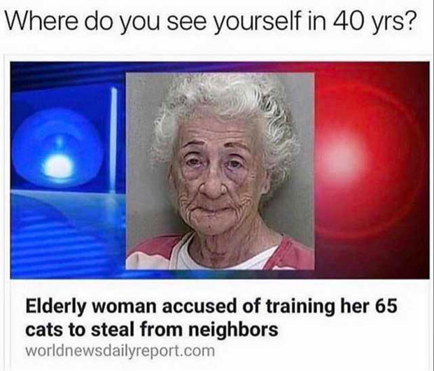 Name:  funny-memes-cat-lady.jpg Views: 27 Size:  55.2 KB
