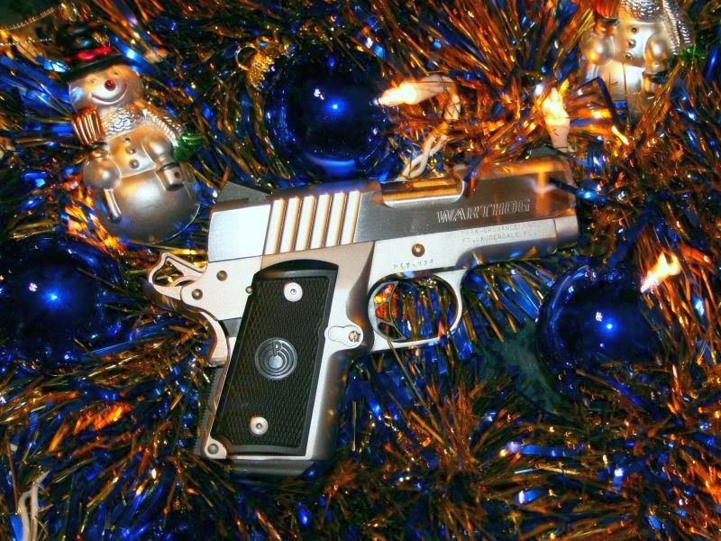 What Gun Would You Like to See Under Your Christmas Tree?