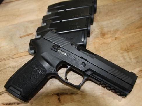 Name:  SIG P320 Gun and mags.jpg Views: 36 Size:  31.6 KB