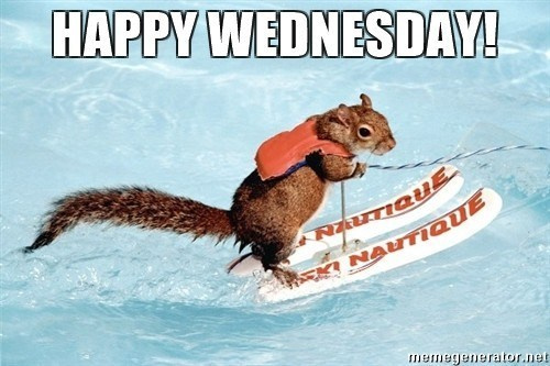 Name:  wednesday-motivational-quotes-funny-outstanding-inspirational-wednesday-quotes-with-funny-wednes.jpg